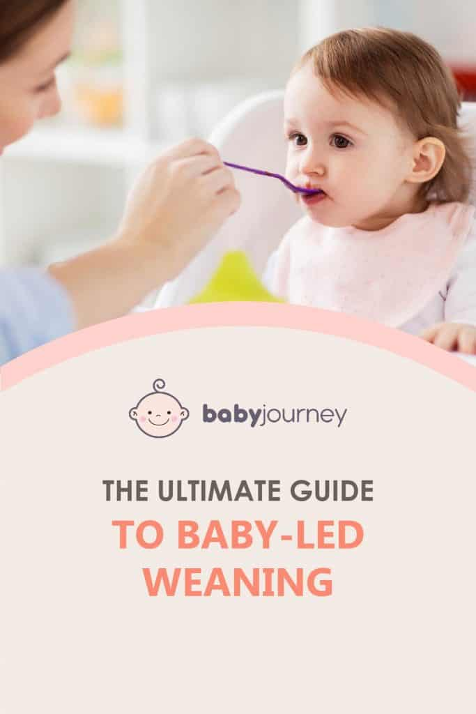 The Ultimate Guide to Baby Led-Weaning | Baby Journey