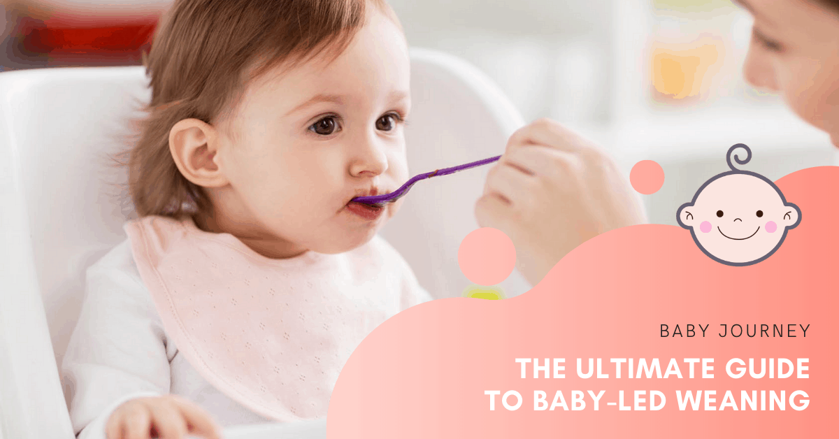 The Ultimate Guide to Baby-Led Weaning | Baby Journey