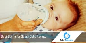 Best Bottle for Gassy Baby Review
