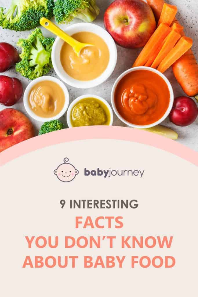 9 Interesting Facts You Don't Know About Baby Food | Baby Journey
