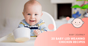 20 Baby-Led Weaning Chicken Recipes | Baby Journey
