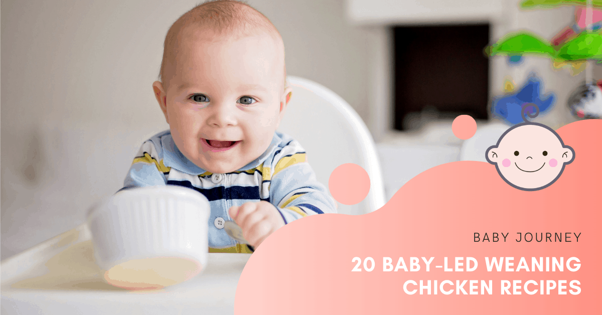20 Baby-Led Weaning Chicken Recipes   Baby Journey