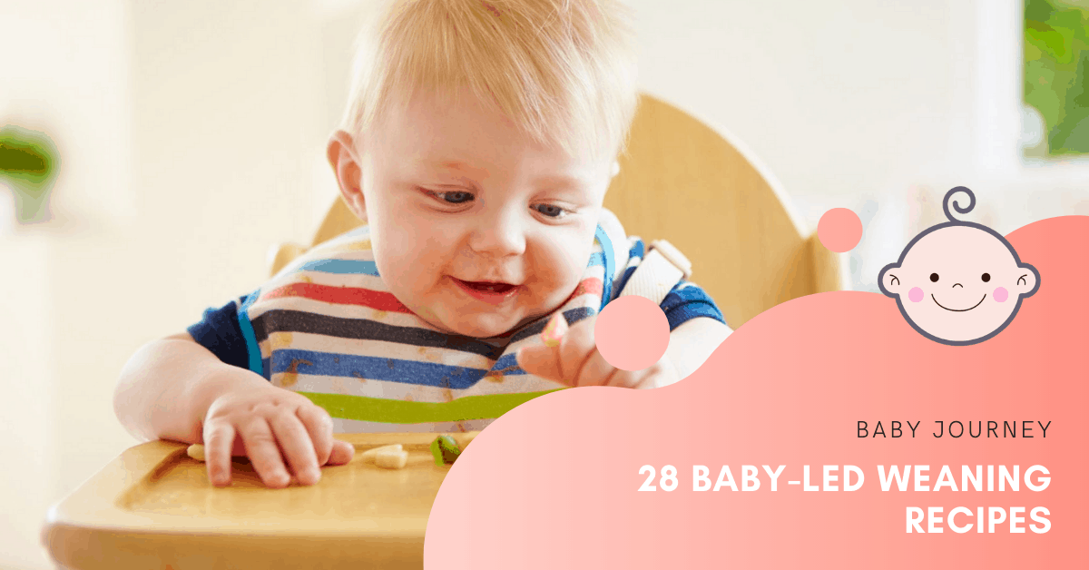 28 Baby-Led Weaning Recipes to Switch Your Munchkin to Solid Foods | Baby Journey