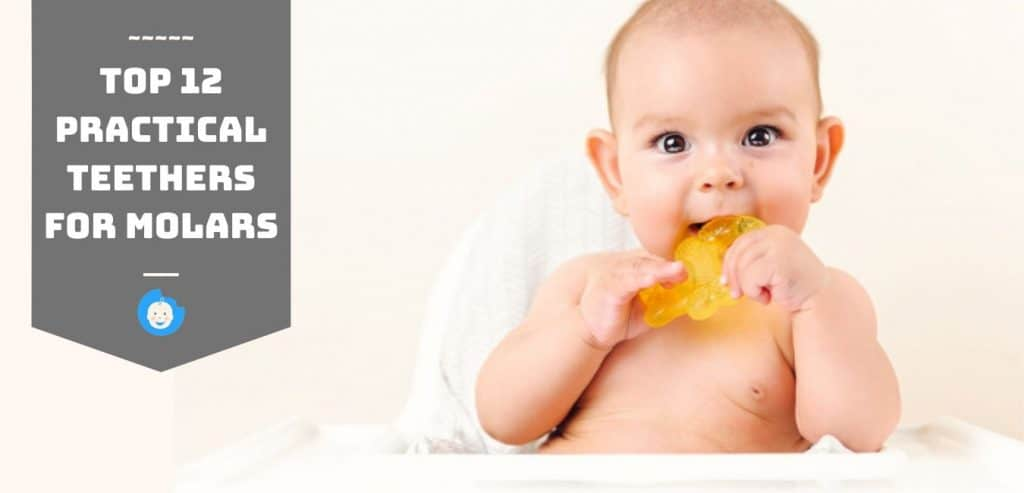 top 12 practical teethers for molars