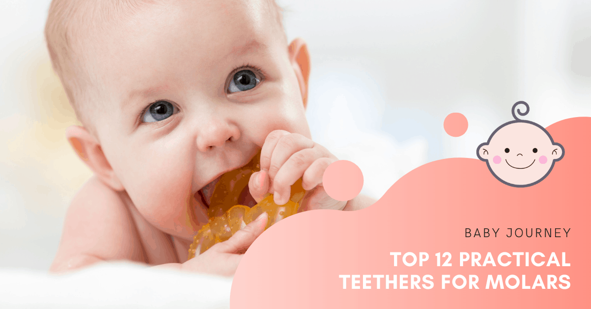 Teethers for Molars | Baby Journey