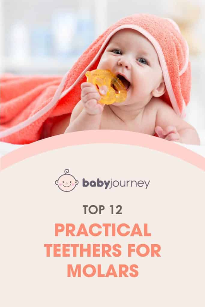 Teethers for Molars   Baby Journey