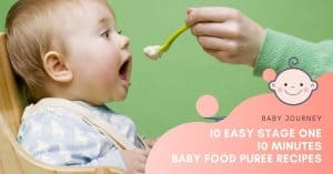 baby food puree recipe