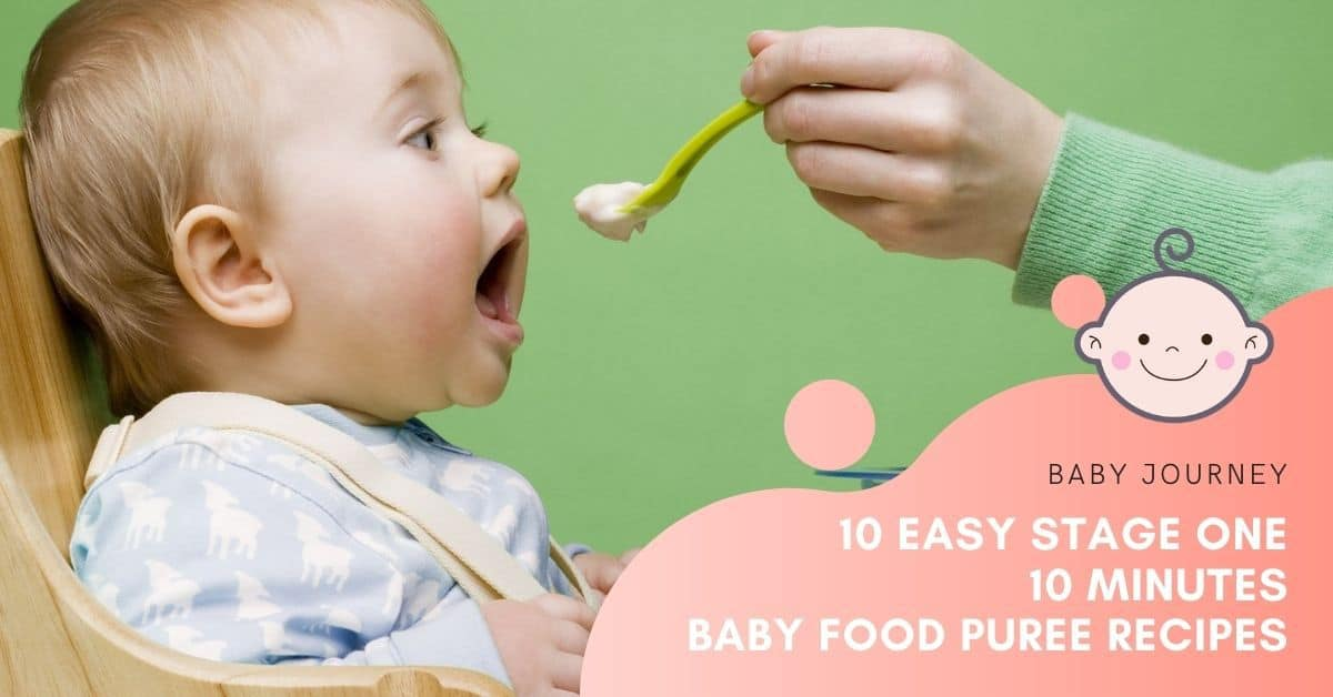 Baby Food Puree Recipes | Baby Journey