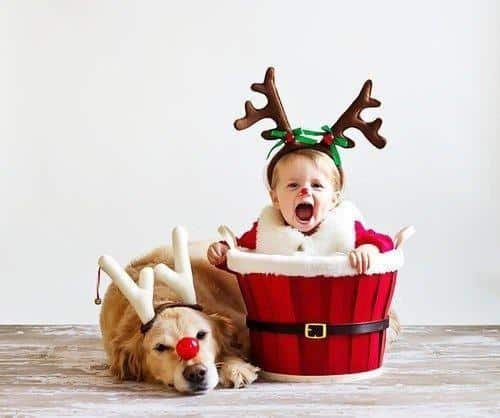 little reindeer | Christmas baby pictures, Babies first christmas, Christmas  photos
