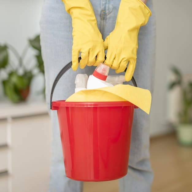 Free Photo | Bucket with cleaning supplies held by woman