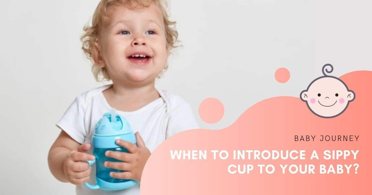 When To Introduce A Sippy Cup to Your Baby | Baby Journey