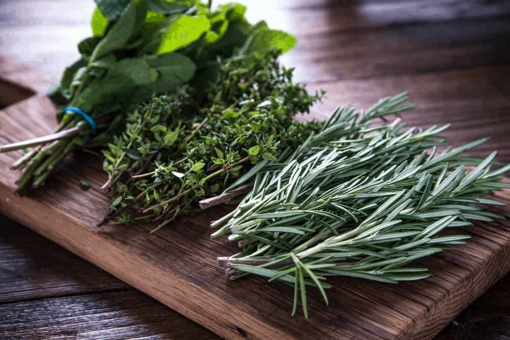 Kale, Peppermint and Sage | Foods to Avoid While Breastfeeding | Baby Journey
