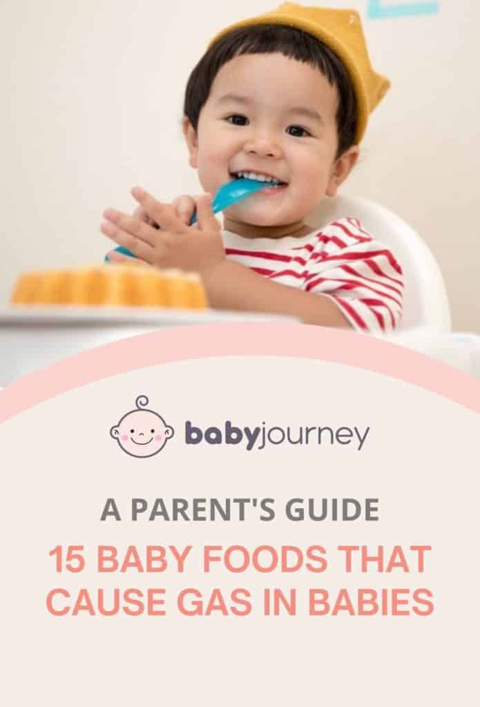 A Parent's Guide to The 15 Baby Foods That Cause Gas in Babies   Baby Journey