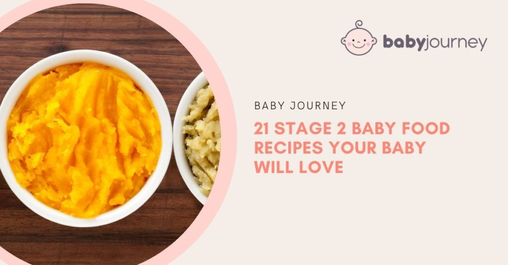 21 Stage 2 Baby Food Recipes Your Baby Will Love   Baby Journey