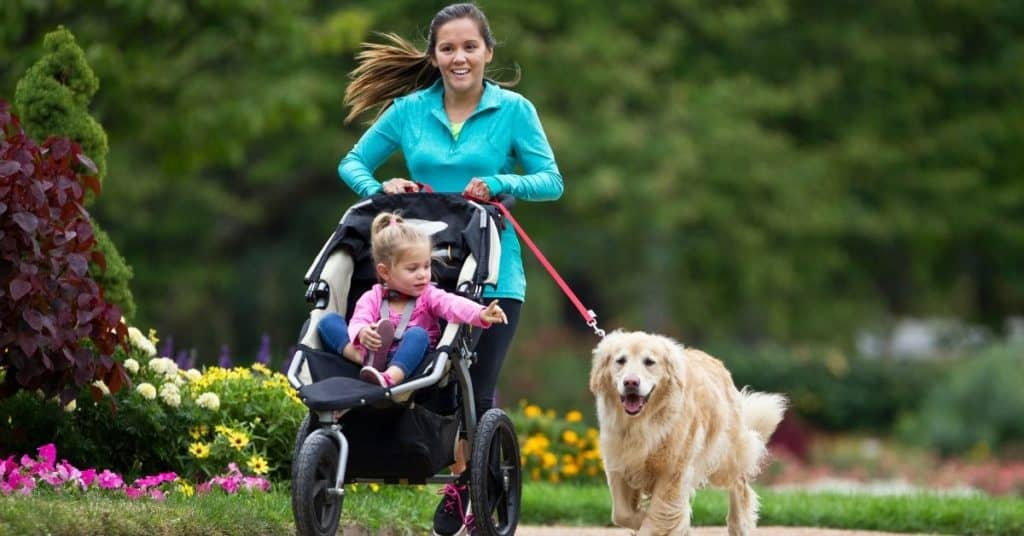 Mom jogging in jogging stroller with daughter and a dog | Best 3 Wheel Stroller | Baby Journey