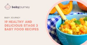 Stage 3 baby foods inspiration - Healthy And Delicious Stage 3 Baby Food Recipes - Baby Journey Blog