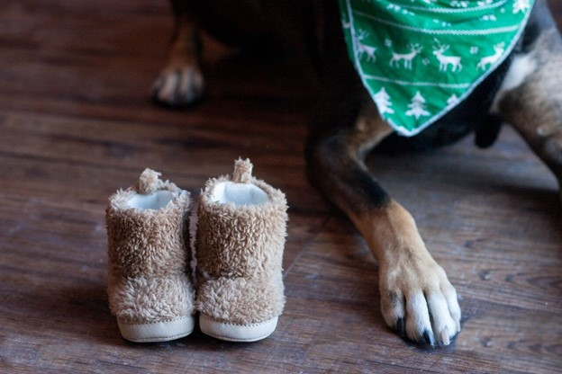 Cute Paws and Baby Shoes - 112 Baby Announcement Ideas Perfect to Grace Your Instagram | Baby Journey Blog