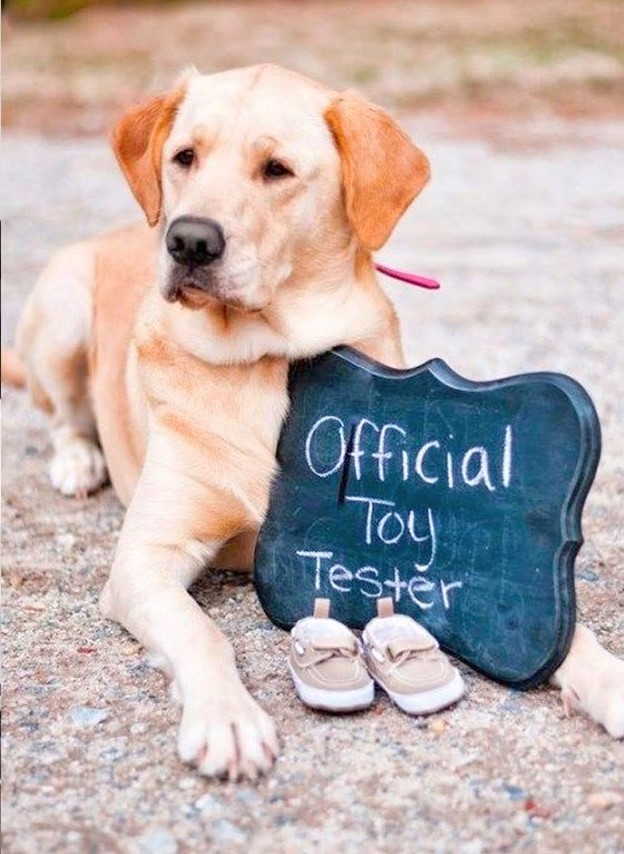The Toy Tester - 112 Baby Announcement Ideas Perfect to Grace Your Instagram | Baby Journey Blog